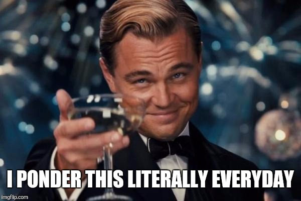 Leonardo Dicaprio Cheers Meme | I PONDER THIS LITERALLY EVERYDAY | image tagged in memes,leonardo dicaprio cheers | made w/ Imgflip meme maker