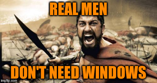Sparta Leonidas Meme | REAL MEN DON'T NEED WINDOWS | image tagged in memes,sparta leonidas | made w/ Imgflip meme maker