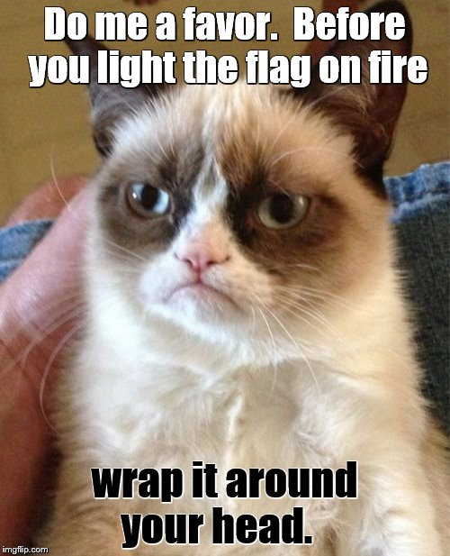 Grumpy Cat Meme | Do me a favor.  Before you light the flag on fire wrap it around your head. | image tagged in memes,grumpy cat | made w/ Imgflip meme maker