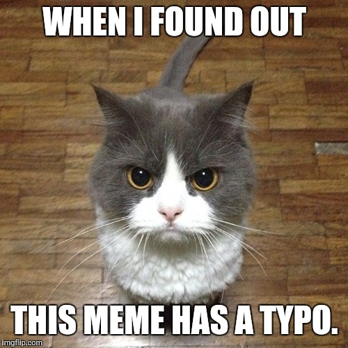 WHEN I FOUND OUT THIS MEME HAS A TYPO. | made w/ Imgflip meme maker