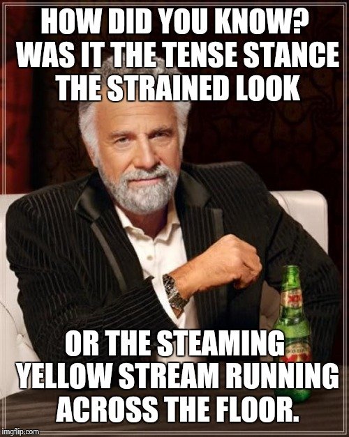 The Most Interesting Man In The World Meme | HOW DID YOU KNOW? WAS IT THE TENSE STANCE THE STRAINED LOOK OR THE STEAMING YELLOW STREAM RUNNING ACROSS THE FLOOR. | image tagged in memes,the most interesting man in the world | made w/ Imgflip meme maker