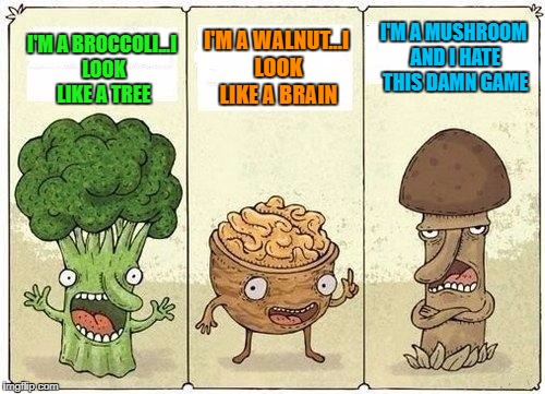 What do your food items look like? | I'M A BROCCOLI...I LOOK LIKE A TREE I'M A WALNUT...I LOOK LIKE A BRAIN I'M A MUSHROOM AND I HATE THIS DAMN GAME | image tagged in two veggies and a nut,memes,comics,funny,vegetables,food games | made w/ Imgflip meme maker