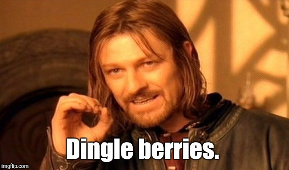 One Does Not Simply Meme | Dingle berries. | image tagged in memes,one does not simply | made w/ Imgflip meme maker