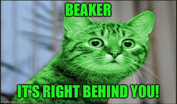 BEAKER IT'S RIGHT BEHIND YOU! | made w/ Imgflip meme maker