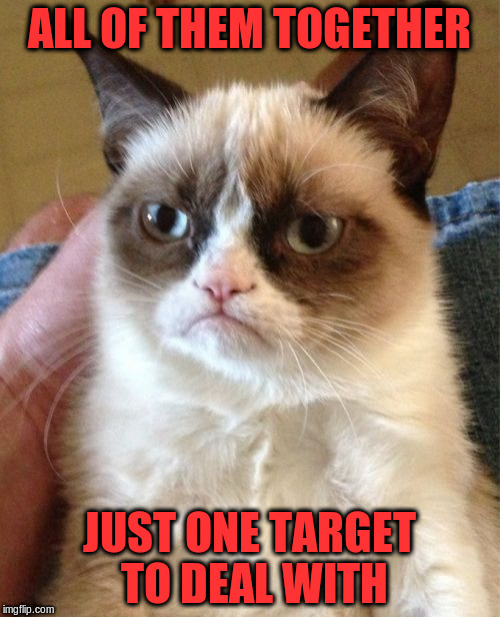 Grumpy Cat Meme | ALL OF THEM TOGETHER JUST ONE TARGET TO DEAL WITH | image tagged in memes,grumpy cat | made w/ Imgflip meme maker