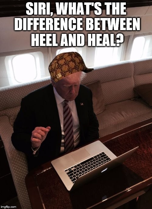 Donald trump typing | SIRI, WHAT'S THE DIFFERENCE BETWEEN HEEL AND HEAL? | image tagged in donald trump typing,scumbag | made w/ Imgflip meme maker