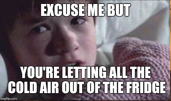 EXCUSE ME BUT YOU'RE LETTING ALL THE COLD AIR OUT OF THE FRIDGE | made w/ Imgflip meme maker
