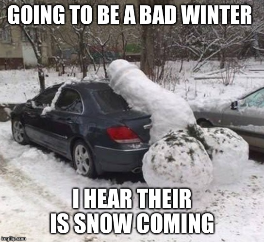 GOING TO BE A BAD WINTER I HEAR THEIR IS SNOW COMING | image tagged in snow balls | made w/ Imgflip meme maker