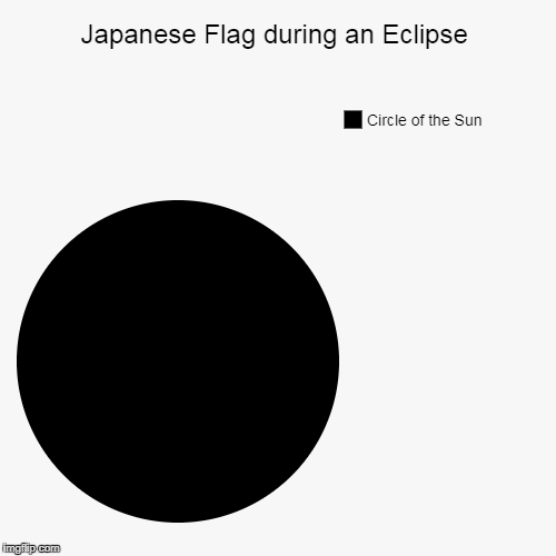 Not Sheldon Cooper's Fun With Flags | Japanese Flag during an Eclipse | Circle of the Sun | image tagged in funny,pie charts,mxm,not richard nixon | made w/ Imgflip pie chart maker