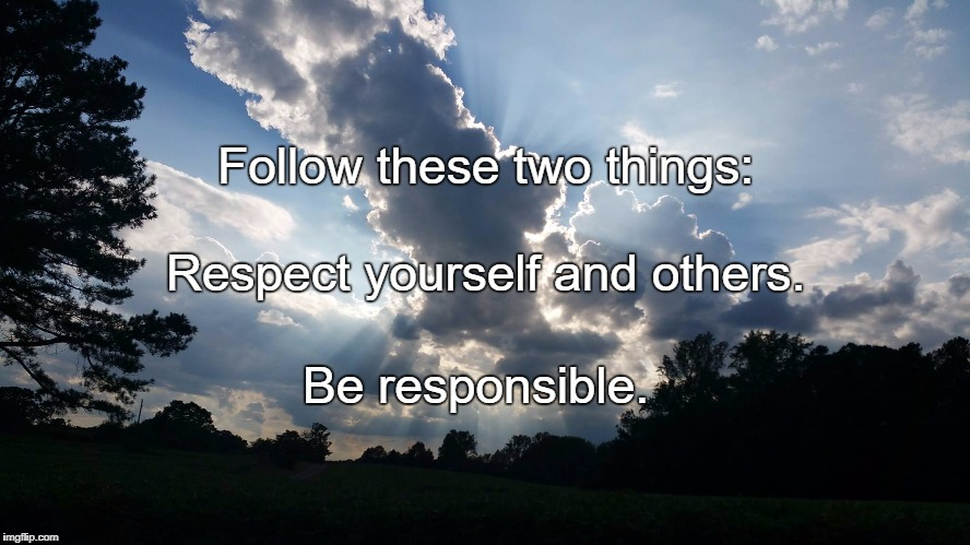 Follow these two things: Be responsible. Respect yourself and others. | image tagged in wisdom | made w/ Imgflip meme maker