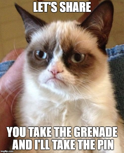 Grenades | LET'S SHARE YOU TAKE THE GRENADE AND I'LL TAKE THE PIN | image tagged in memes,grumpy cat,grenade,sharing | made w/ Imgflip meme maker