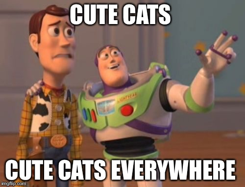 X, X Everywhere Meme | CUTE CATS CUTE CATS EVERYWHERE | image tagged in memes,x,x everywhere,x x everywhere | made w/ Imgflip meme maker