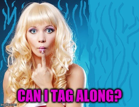 ditzy blonde | CAN I TAG ALONG? | image tagged in ditzy blonde | made w/ Imgflip meme maker