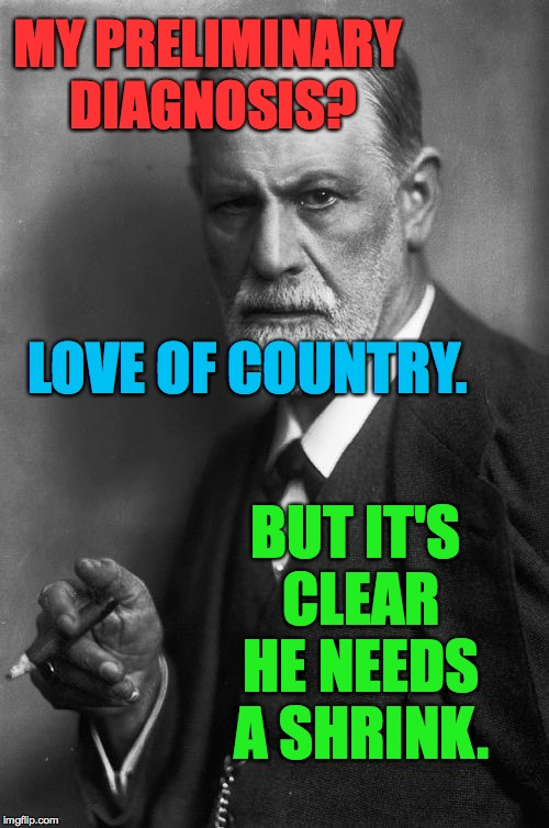 He needs a shrink and a psychiatrist.  In that order. | MY PRELIMINARY DIAGNOSIS? BUT IT'S CLEAR HE NEEDS A SHRINK. LOVE OF COUNTRY. | image tagged in memes,freud,funny | made w/ Imgflip meme maker