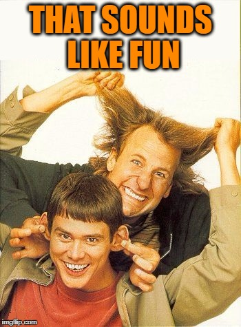 DUMB and dumber | THAT SOUNDS LIKE FUN | image tagged in dumb and dumber | made w/ Imgflip meme maker