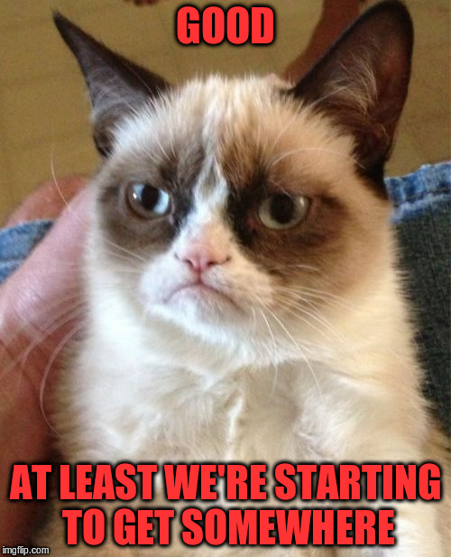 Grumpy Cat Meme | GOOD AT LEAST WE'RE STARTING TO GET SOMEWHERE | image tagged in memes,grumpy cat | made w/ Imgflip meme maker