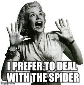 I PREFER TO DEAL WITH THE SPIDER | made w/ Imgflip meme maker