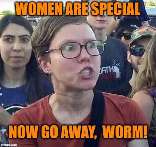 Triggered feminist | WOMEN ARE SPECIAL NOW GO AWAY,  WORM! | image tagged in triggered feminist | made w/ Imgflip meme maker