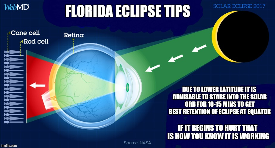 Florida Eclipse Tipsheet |  FLORIDA ECLIPSE TIPS; DUE TO LOWER LATITUDE IT IS ADVISABLE TO STARE INTO THE SOLAR ORB FOR 10-15 MINS TO GET BEST RETENTION OF ECLIPSE AT EQUATOR; IF IT BEGINS TO HURT THAT IS HOW YOU KNOW IT IS WORKING | image tagged in eclipse 2017,memes,sun,solar eclipse,educational,visual aid | made w/ Imgflip meme maker