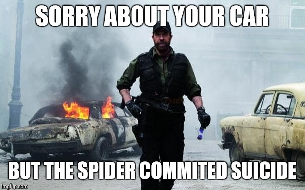 SORRY ABOUT YOUR CAR BUT THE SPIDER COMMITED SUICIDE | made w/ Imgflip meme maker