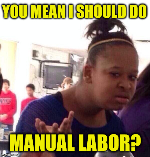 Black Girl Wat Meme | YOU MEAN I SHOULD DO MANUAL LABOR? | image tagged in memes,black girl wat | made w/ Imgflip meme maker