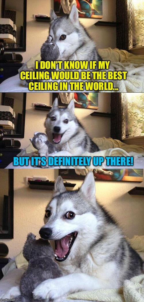 Bad Pun Dog Meme | I DON'T KNOW IF MY CEILING WOULD BE THE BEST CEILING IN THE WORLD... BUT IT'S DEFINITELY UP THERE! | image tagged in memes,bad pun dog | made w/ Imgflip meme maker