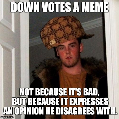 If you disagree with an opinion in a meme, just ignore it! | DOWN VOTES A MEME NOT BECAUSE IT'S BAD, BUT BECAUSE IT EXPRESSES AN OPINION HE DISAGREES WITH. | image tagged in memes,scumbag steve,scumbag | made w/ Imgflip meme maker
