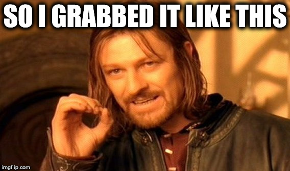 One Does Not Simply Meme | SO I GRABBED IT LIKE THIS | image tagged in memes,one does not simply | made w/ Imgflip meme maker