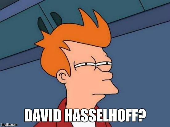 Futurama Fry Meme | DAVID HASSELHOFF? | image tagged in memes,futurama fry | made w/ Imgflip meme maker
