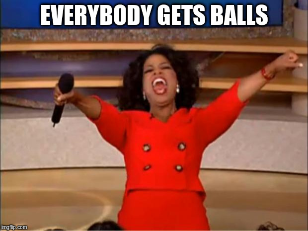 Oprah You Get A Meme | EVERYBODY GETS BALLS | image tagged in memes,oprah you get a | made w/ Imgflip meme maker