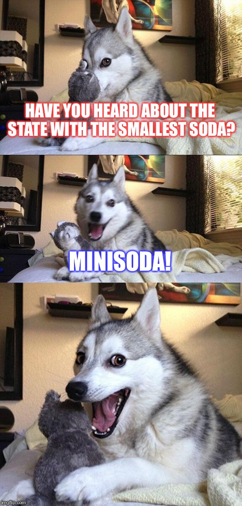 Bad Pun Dog Meme | HAVE YOU HEARD ABOUT THE STATE WITH THE SMALLEST SODA? MINISODA! | image tagged in memes,bad pun dog | made w/ Imgflip meme maker