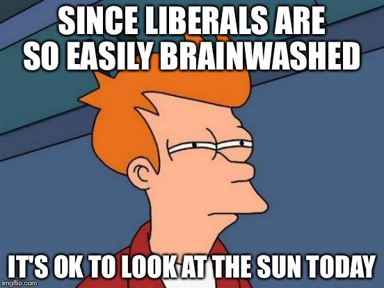 Futurama Fry Meme | SINCE LIBERALS ARE SO EASILY BRAINWASHED IT'S OK TO LOOK AT THE SUN TODAY | image tagged in memes,futurama fry | made w/ Imgflip meme maker