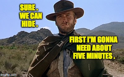 SURE .   WE CAN HIDE . FIRST I'M GONNA NEED ABOUT FIVE MINUTES . | made w/ Imgflip meme maker