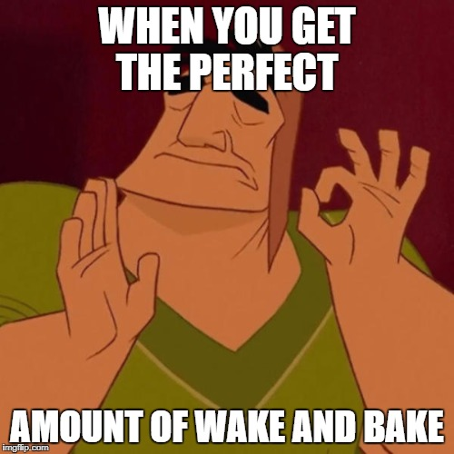 Pacha perfect | WHEN YOU GET THE PERFECT AMOUNT OF WAKE AND BAKE | image tagged in pacha perfect,smoke weed everyday,weed,disney | made w/ Imgflip meme maker