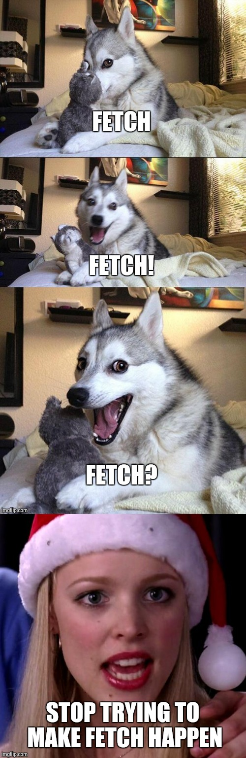 She's such a mean girl. I hope she gets hit by a bus. | STOP TRYING TO MAKE FETCH HAPPEN | image tagged in bad pun dog,mean girls,stop trying to make fetch happen,fetch | made w/ Imgflip meme maker