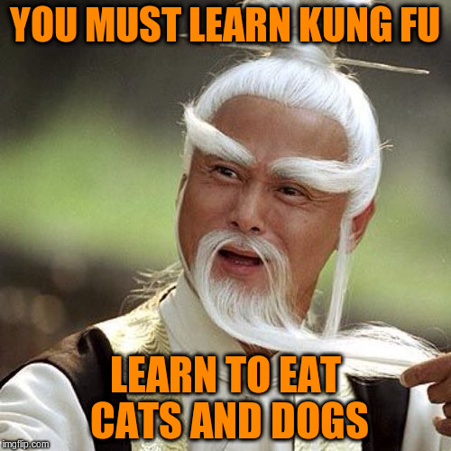 YOU MUST LEARN KUNG FU LEARN TO EAT CATS AND DOGS | made w/ Imgflip meme maker
