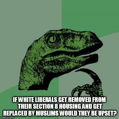 Philosoraptor Meme | IF WHITE LIBERALS GET REMOVED FROM THEIR SECTION 8 HOUSING AND GET REPLACED BY MUSLIMS WOULD THEY BE UPSET? | image tagged in memes,philosoraptor | made w/ Imgflip meme maker