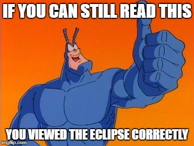 The Tick thumbs up | IF YOU CAN STILL READ THIS YOU VIEWED THE ECLIPSE CORRECTLY | image tagged in the tick thumbs up | made w/ Imgflip meme maker