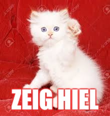 Nazi Kitty | ZEIG HIEL | image tagged in nazi kitty | made w/ Imgflip meme maker