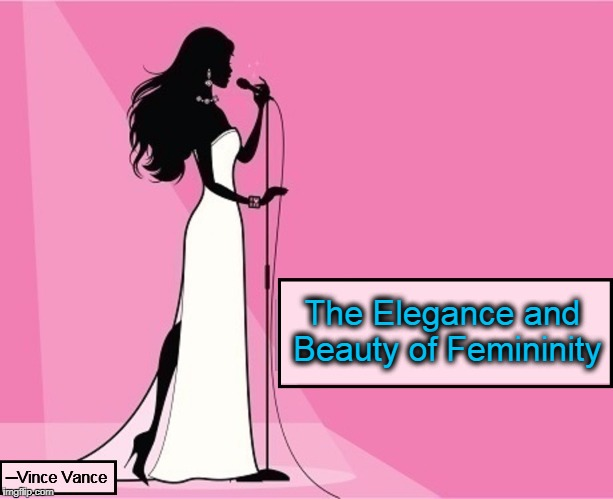 Femininity is Still Alive | The Elegance and Beauty of Femininity ─Vince Vance | image tagged in vince vance,valiantettes,pretty in pink,it's okay to be feminine,feminine wiles,womanhood | made w/ Imgflip meme maker