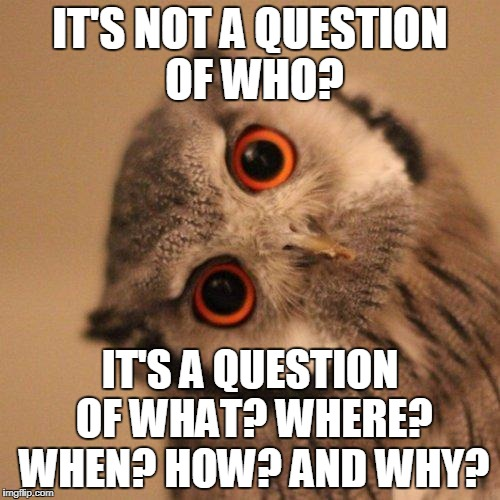 inquisitve owl | IT'S NOT A QUESTION OF WHO? IT'S A QUESTION OF WHAT? WHERE? WHEN? HOW? AND WHY? | image tagged in inquisitve owl | made w/ Imgflip meme maker