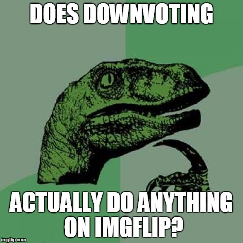Downvote all you want it doesn't mean a thing! | DOES DOWNVOTING ACTUALLY DO ANYTHING ON IMGFLIP? | image tagged in memes,philosoraptor,downvote,imgflip | made w/ Imgflip meme maker
