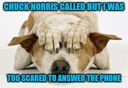 CHUCK NORRIS CALLED BUT I WAS TOO SCARED TO ANSWER THE PHONE | made w/ Imgflip meme maker