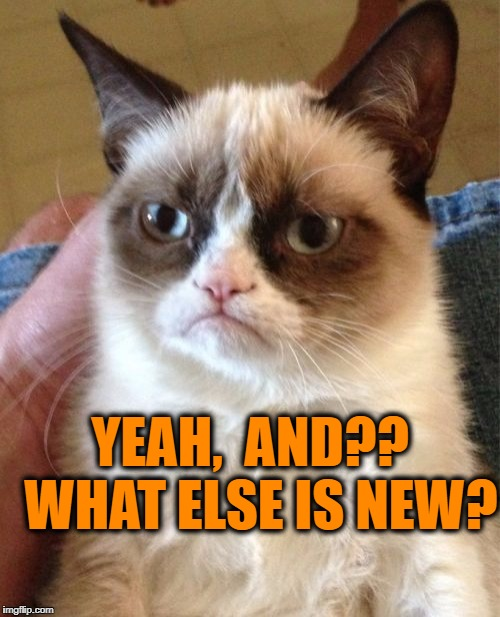 Grumpy Cat Meme | YEAH,  AND??  WHAT ELSE IS NEW? | image tagged in memes,grumpy cat | made w/ Imgflip meme maker