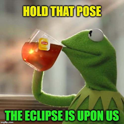 But Thats None Of My Business Meme | HOLD THAT POSE THE ECLIPSE IS UPON US | image tagged in memes,but thats none of my business,kermit the frog | made w/ Imgflip meme maker