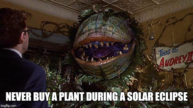NEVER BUY A PLANT DURING A SOLAR ECLIPSE | image tagged in eclipse 2017,little,shop,audrey2 | made w/ Imgflip meme maker