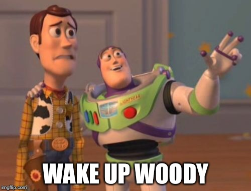 X, X Everywhere Meme | WAKE UP WOODY | image tagged in memes,x,x everywhere,x x everywhere | made w/ Imgflip meme maker