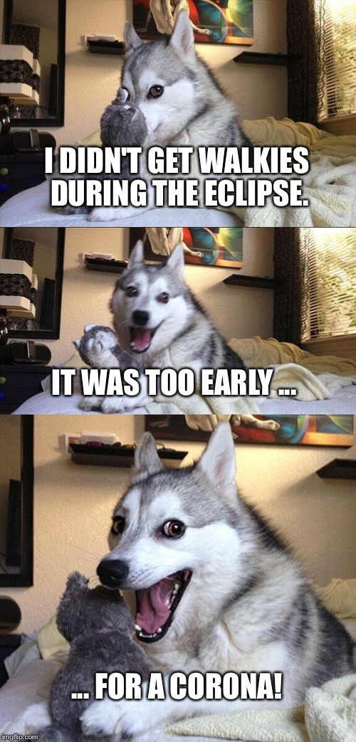 Bad Pun Dog Meme | I DIDN'T GET WALKIES DURING THE ECLIPSE. IT WAS TOO EARLY ... ... FOR A CORONA! | image tagged in memes,bad pun dog | made w/ Imgflip meme maker