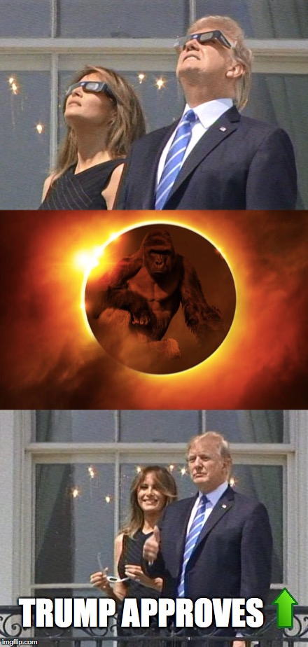 Trump Sees the light | TRUMP APPROVES | image tagged in harambe,donald trump,upvote,one does not simply,the most interesting man in the world | made w/ Imgflip meme maker