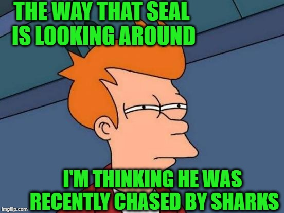 Futurama Fry Meme | THE WAY THAT SEAL IS LOOKING AROUND I'M THINKING HE WAS RECENTLY CHASED BY SHARKS | image tagged in memes,futurama fry | made w/ Imgflip meme maker